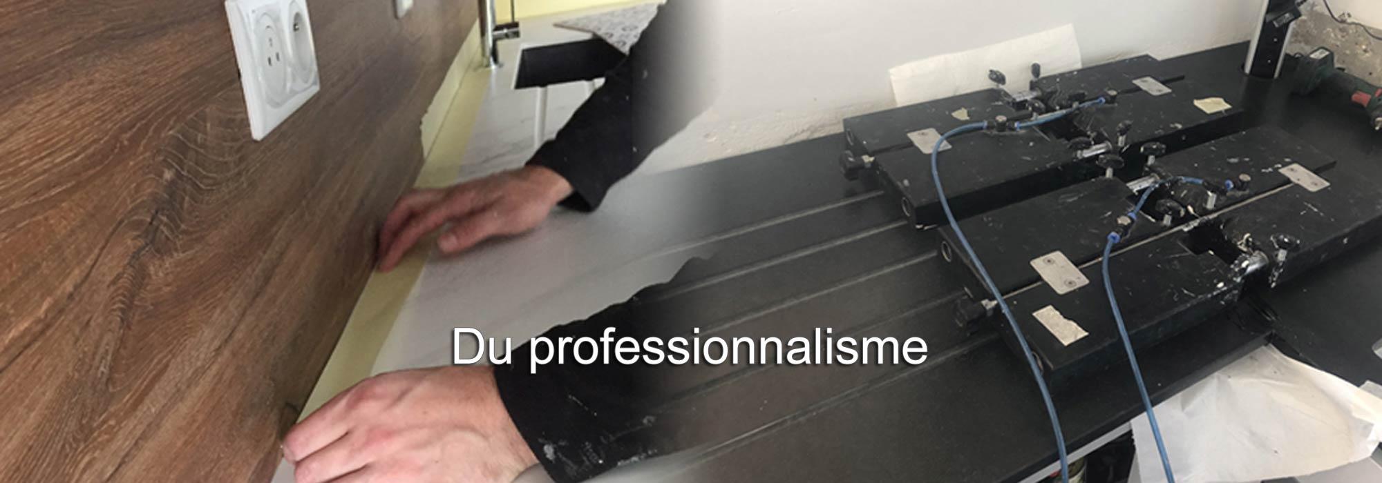 Du professionnalisme